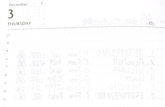 Edit手帳(エディット)とペンの相性比較!油性ボールペン裏移り