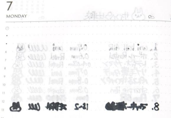 Edit手帳(エディット)とペンの相性比較!サインペン比較