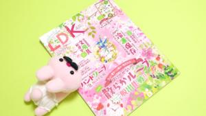【掲載情報】テストする女性誌LDK4月号に掲載されました!